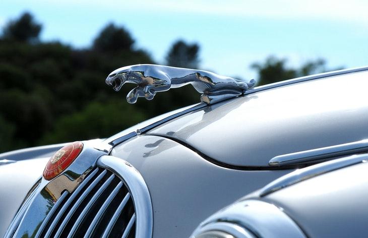 Автоистория: Jaguar - голямата и мощна котка